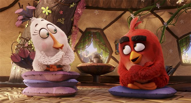 The Angry Birds Movie Photo 27 - Large