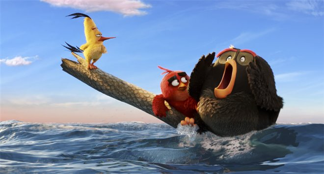 The Angry Birds Movie Photo 29 - Large