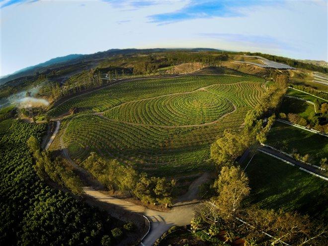 The Biggest Little Farm Photo 3 - Large