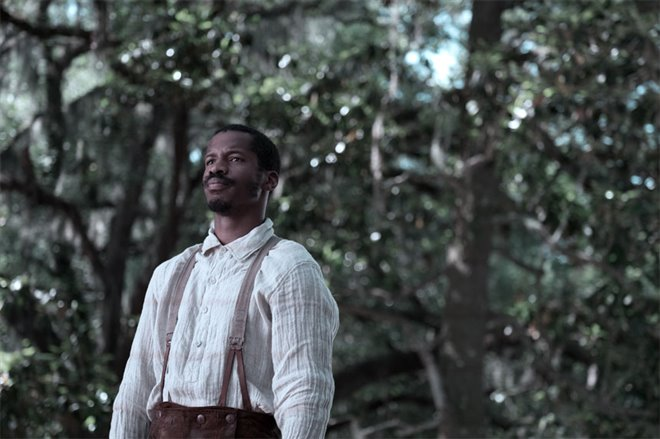 The Birth of a Nation Photo 2 - Large
