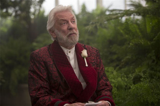 The Hunger Games: Mockingjay - Part 2 Photo 4 - Large