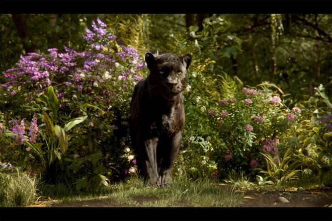 The Jungle Book Photo 10 - Large
