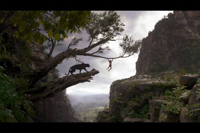 The Jungle Book Photo 16 - Large