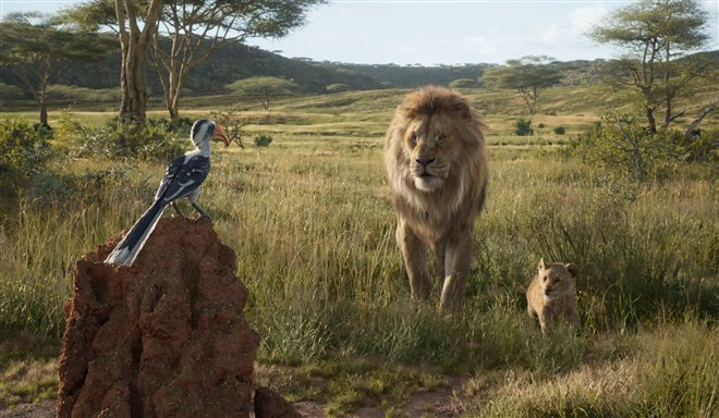 The Lion King Photo 17 - Large