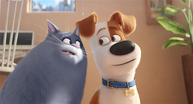 The Secret Life of Pets Photo 2 - Large