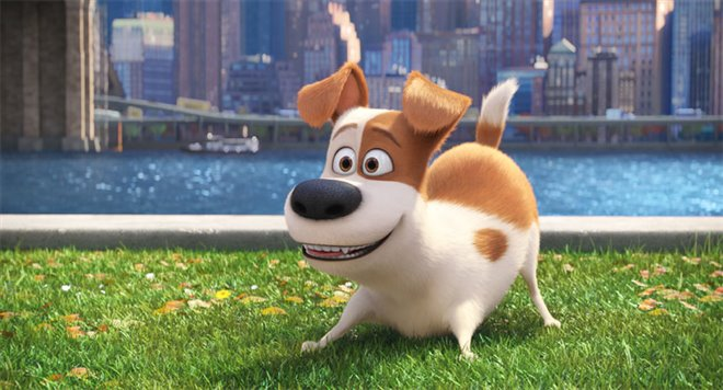 The Secret Life of Pets Photo 16 - Large