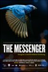 The Messenger (v.o.a.) Affiche de film