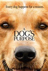 A Dog's Purpose Affiche de film