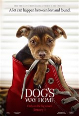 A Dog's Way Home Movie Poster Movie Poster