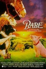 Babe Movie Poster