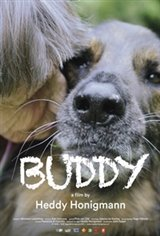 Buddy (2017) Large Poster