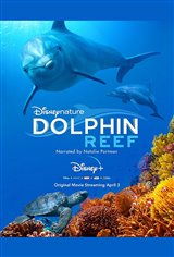 Dolphin Reef (Disney+) Movie Poster