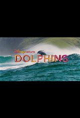 Dolphins trailer