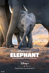 Elephant (Disney+) Movie Poster