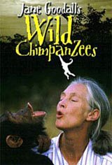 a review of the story of jane goodall in the movie among the wild chipanzees Overview of among the wild chimpanzees, 1984, with jane goodall, alexander scourby, at turner classic movies.