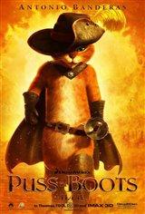 Le chat potté Movie Poster