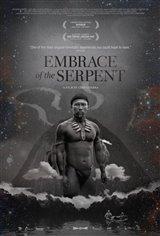 L'étreinte du serpent (v.o. s.-t.f.) Affiche de film