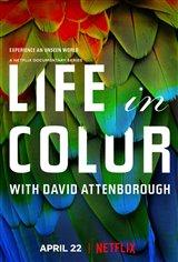 Life in Color with David Attenborough (Netflix) Affiche de film