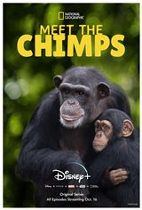 Meet the Chimps (Disney+) Movie Poster