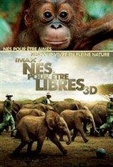 Nés pour être libres 3D Movie Poster
