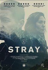 Stray (2018) Affiche de film