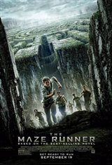 The Maze Runner Large Poster