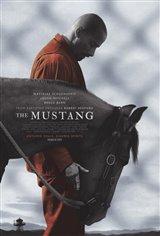 The Mustang (v.o.a.) Affiche de film