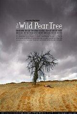 The Wild Pear Tree Affiche de film