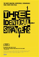 Three Identical Strangers Affiche de film
