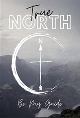 True North Large Poster
