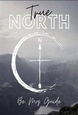 True North Movie Poster