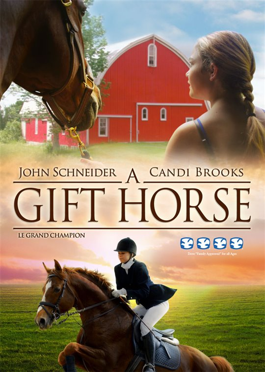 a gift horse on dvd movie synopsis and info. Black Bedroom Furniture Sets. Home Design Ideas