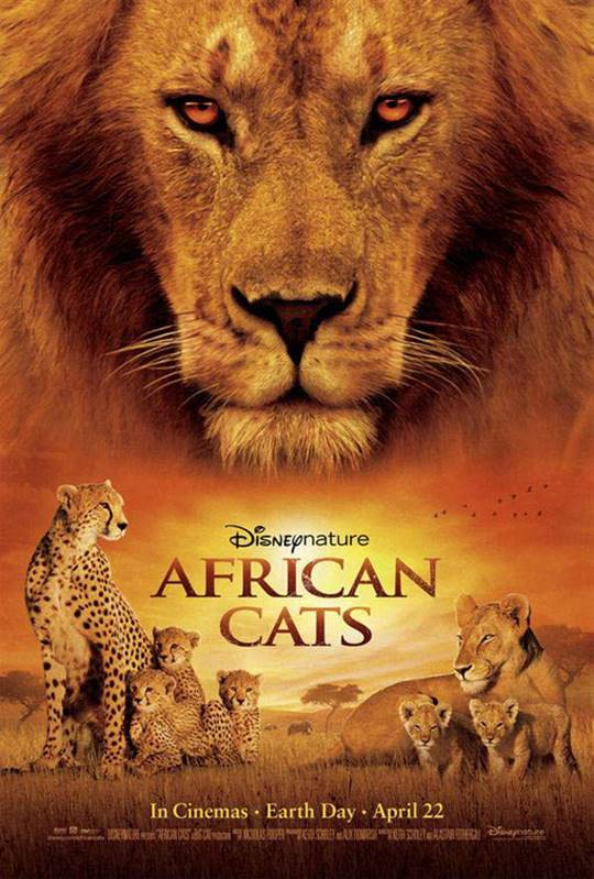 African Cats Large Poster