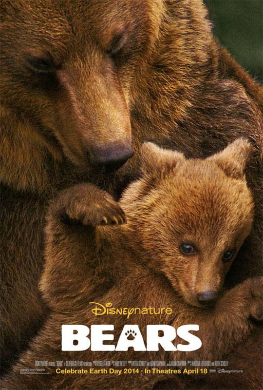 Bears Large Poster