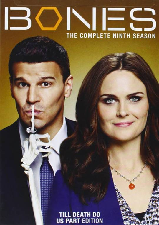 Bones: The Complete Season Nine Large Poster