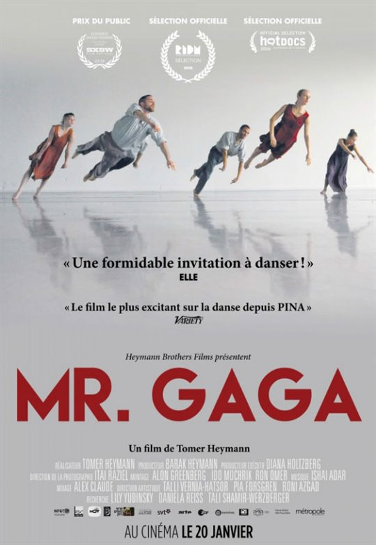 Mr. Gaga (v.o.s.-t.f.) Large Poster