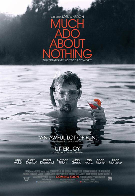 Much Ado About Nothing (2013) Large Poster