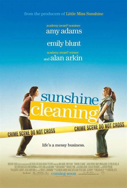 Sunshine Cleaning Large Poster