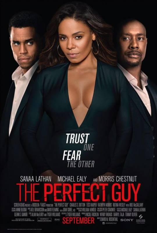 The Perfect Guy Large Poster