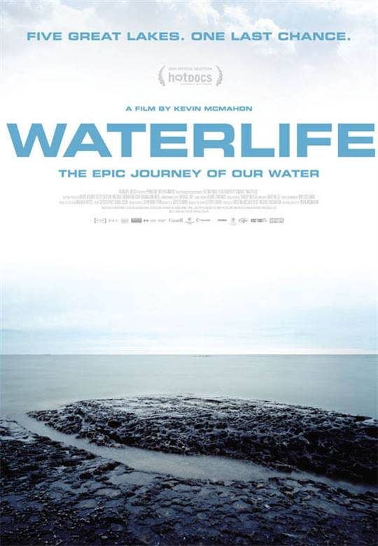 Waterlife Large Poster