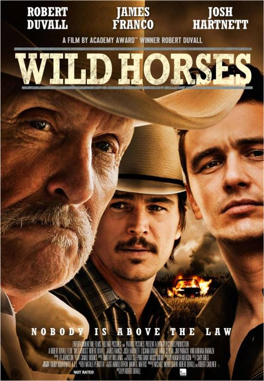 Wild Horses Large Poster