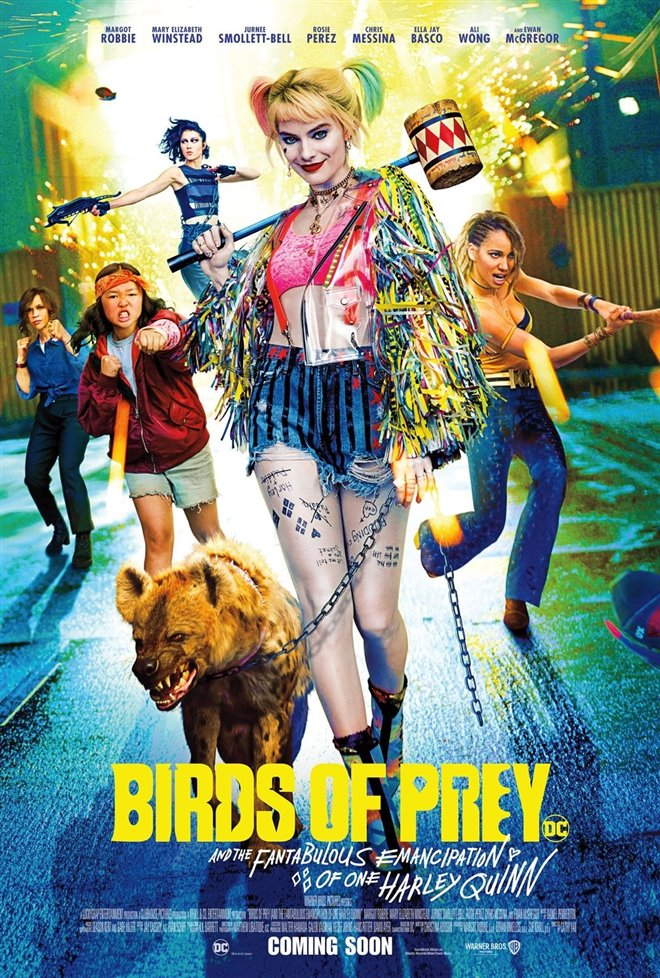 Birds of Prey Large Poster