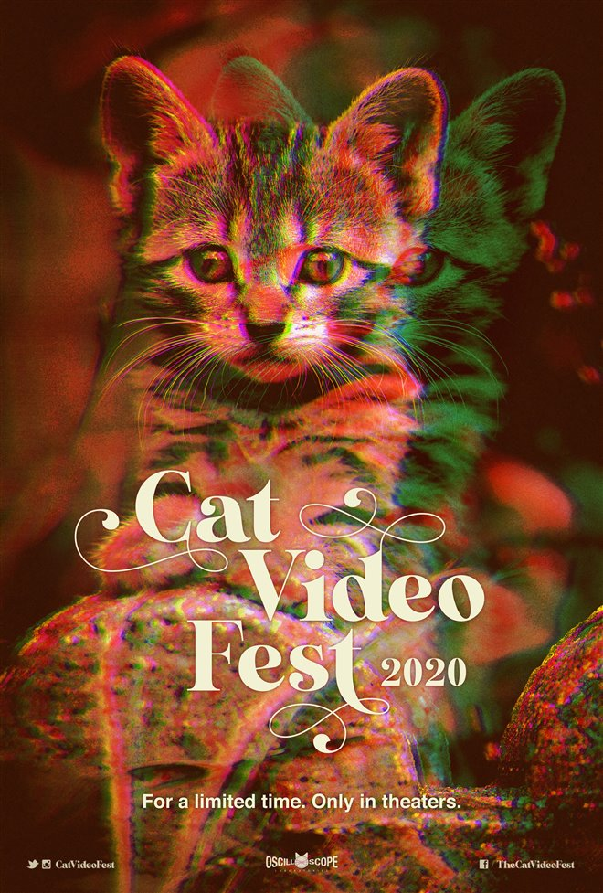 Cinematheque at Home: CatVideoFest 2020 Large Poster