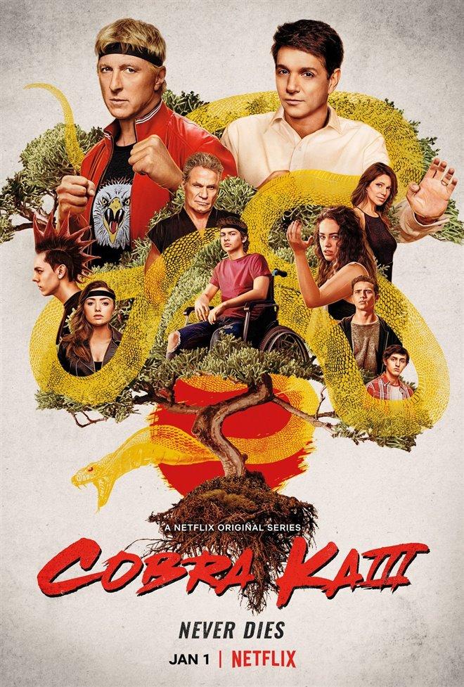 Cobra Kai (Netflix) Large Poster