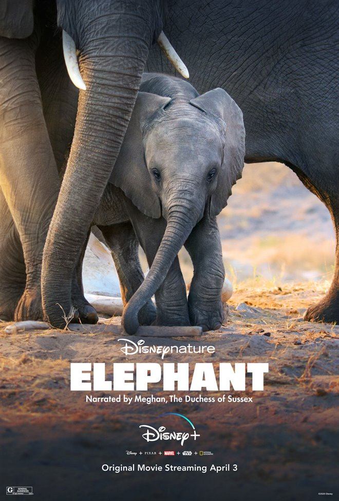 Elephant (Disney+) Large Poster