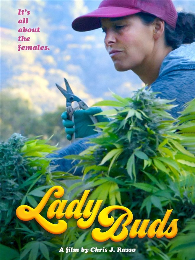 Lady Buds Large Poster