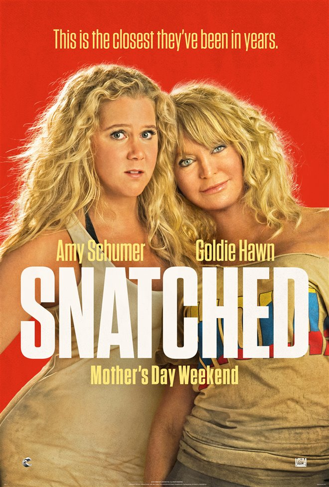 Snatched Large Poster