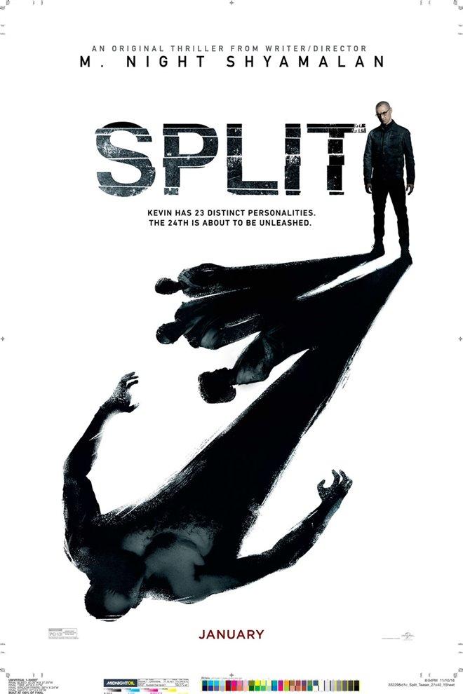 Split Large Poster
