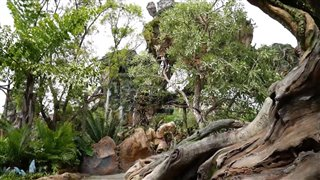 Pandora: The World of Avatar at Walt Disney World video