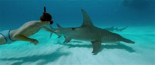 Sharkwater Extinction Thumbnail